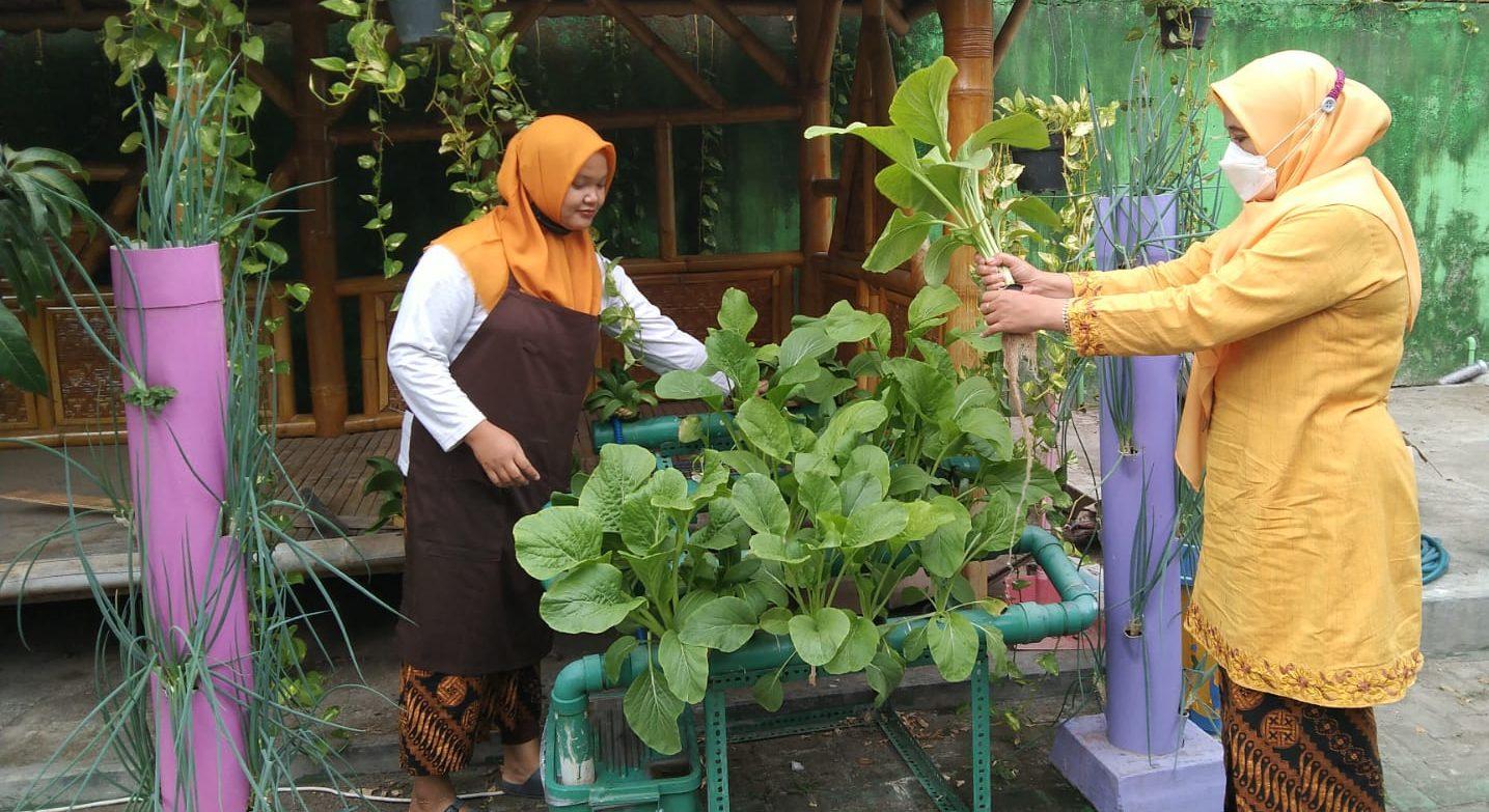 Kebun Sayur dan Buah sebagai Sumber Pemenuhan Gizi di SD Muhammadiyah Condongcatur